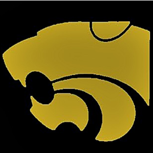 Hayden Catholic High School  logo