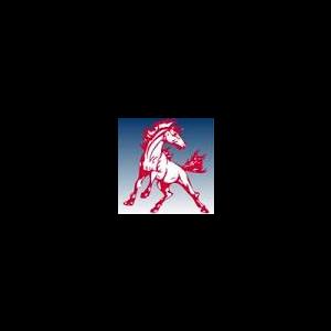 Montabella High School logo
