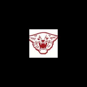 Cunningham High School logo