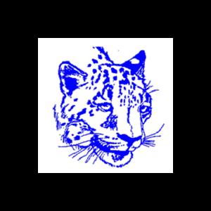 Lincoln Jr-Sr High School logo