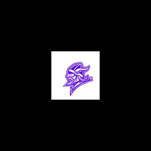 Northeast High School logo