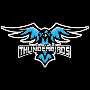 Mahnomen-Waubun Thunderbirds | 2018 Football Boys | Digital Scout live sports scores and stats