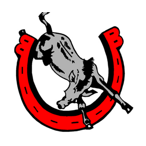 Bedford High School logo